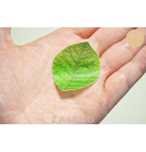 Edible Faux Leaf