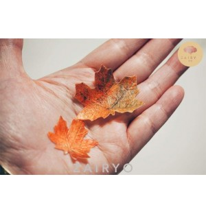 Edible Faux Maple Leaf