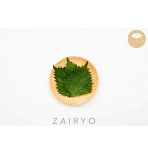 Ohba (Perilla Leaf) / おおば