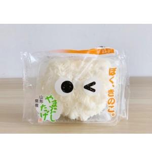 Yamabushidake (Lion's Mane Mushroom) / 山伏茸